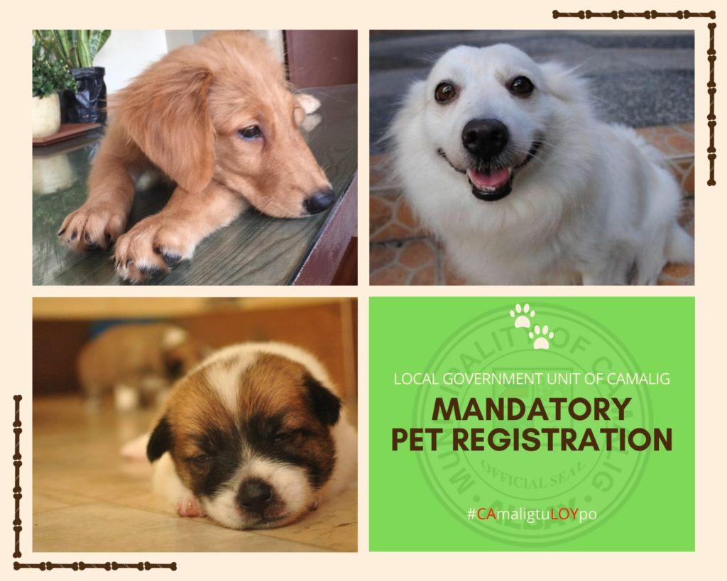 FYI: Mandatory pet registration